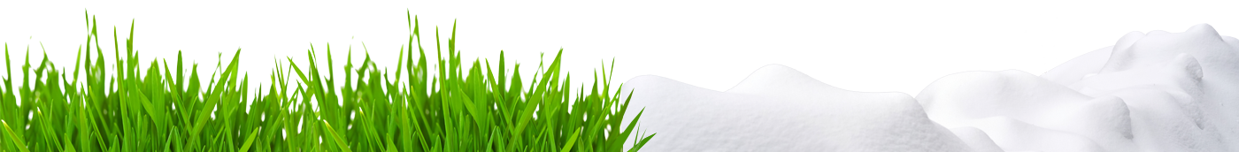 Lawn and Snow Maintenance